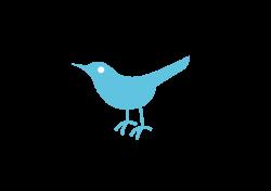 Twitter Bird Logo Png Transparent Background | ETM