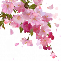 FLORES Y LETRAS PARA DECOUPAGE | Pinterest | Cherry blossoms ...