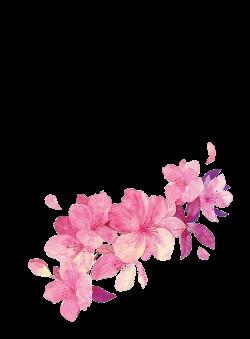 点击查看源网页 | Drawing - Chinese style | Pinterest