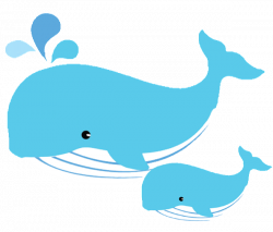 Mom and baby whale clipart | Whales | Pinterest | Baby whale, Clip ...