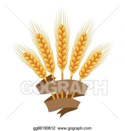 Clip Art Vector - Bunch of wheat, barley or rye ears ...