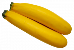 yellow zucchini png - Free PNG Images | TOPpng